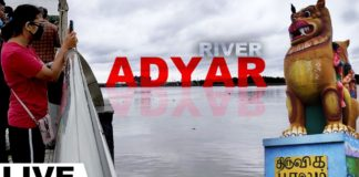 Adyar River Exclusive Video