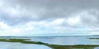 Chembarambakkam Lake Water Update