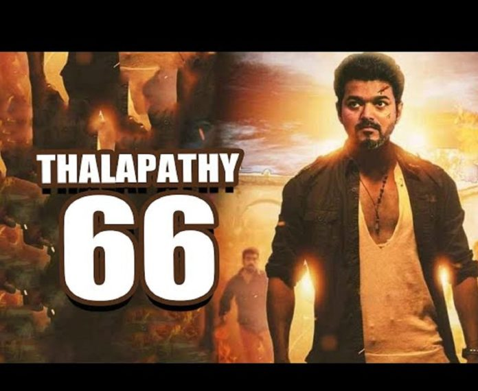 Vijay 66 Movie Update